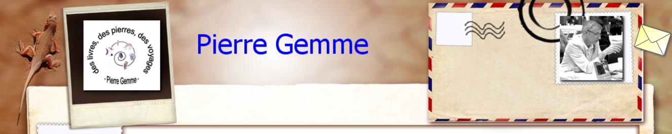 Pierre gemme site officiel pierre gemme livres