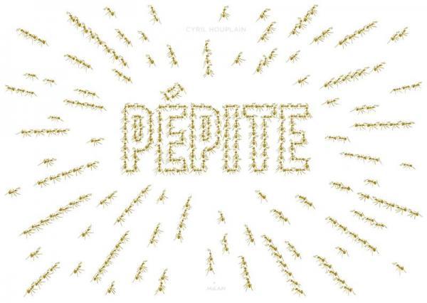 Pepite 2