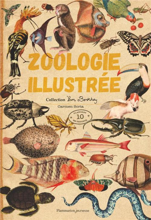 Zoologie illustree